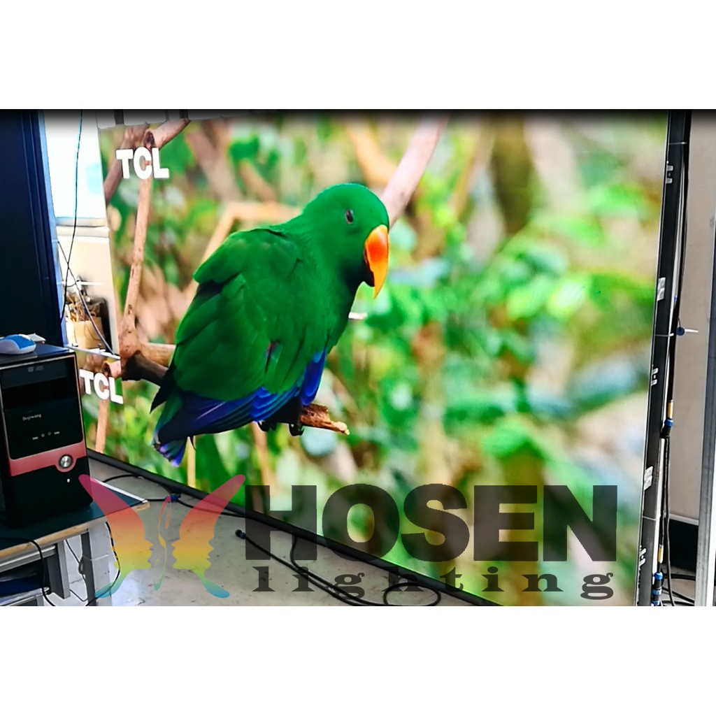 P3 indoor led display rental